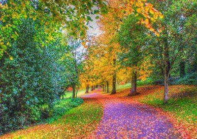 Autumn Holywells Park