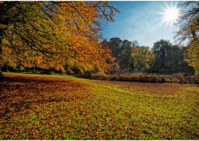 Autumn in Holywells park. www.parrishcolmanphotography.co.uk