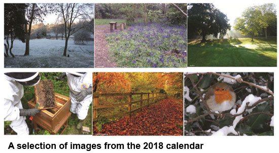 Holywells Park 2018 Calendar