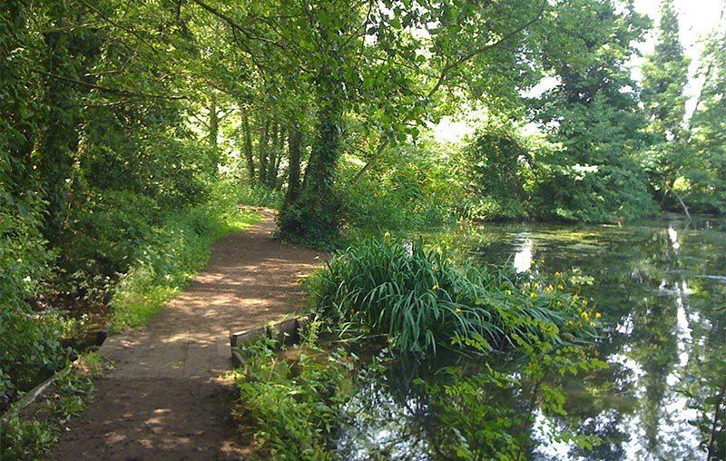 Pond in Holywells Park, Ipswich