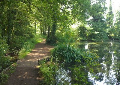 Ponds in Holywells Park Ipswich