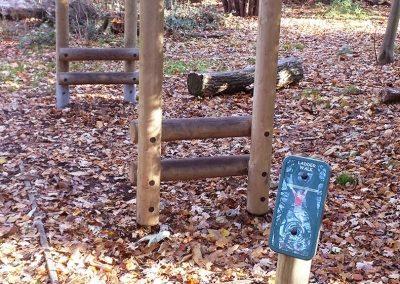 Trim trail at Holywells park. Photo R Bloomfield