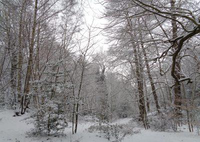 Holywells Park in the snow, 28 February 2018. Sarah Turner