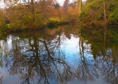 Holywells Ponds. Photo R Bloomfield